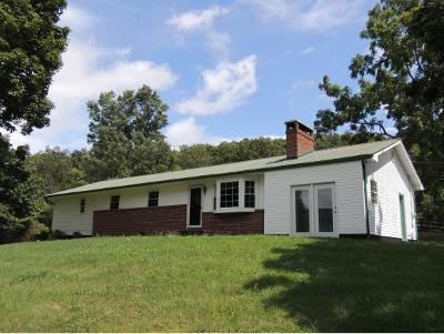 Rogersville Single Family Home For Sale: 562 W Bear Hollow