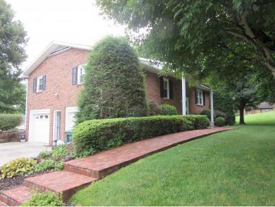 Elizabethton Single Family Home For Sale: 563 Jobe Rd