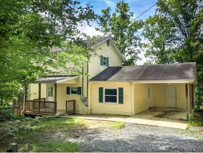 Piney Flats Single Family Home For Sale: 403 Deerlick Road