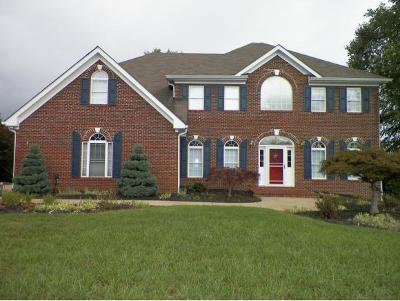 Greeneville Single Family Home For Sale: 137 Magnolia Drive