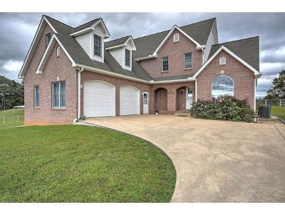 Blountville Single Family Home For Sale: 510 Rodgers Oakdale Rd