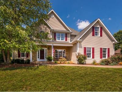Blountville Single Family Home For Sale: 300 Southridge Drive