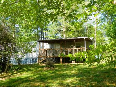 Bluff City Single Family Home For Sale: 363 Weaver Creek Rd
