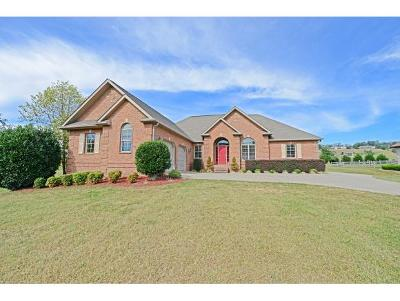 Greeneville Single Family Home For Sale: 902 Waterstone Circle