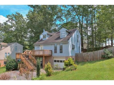 Johnson City Single Family Home For Sale: 1829 Todd Drive