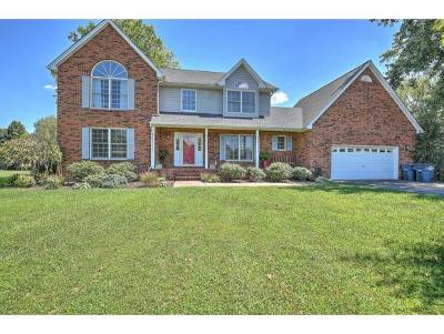 Kingsport Single Family Home For Sale: 1021 South Page Place
