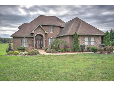 Greeneville Single Family Home For Sale: 3625 Holly Creek Rd