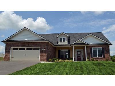 Jonesborough Single Family Home For Sale: 1080 Peaceful Dr