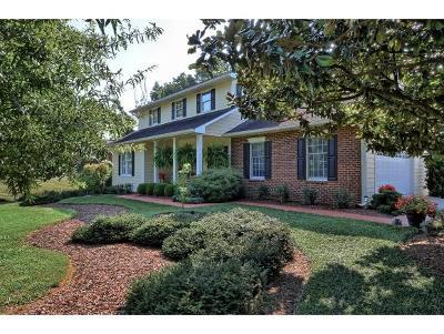 Johnson City Single Family Home For Sale: 290 Pickens Bridge Rd