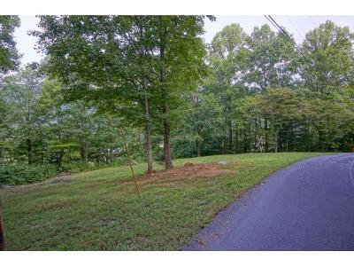 Unicoi Residential Lots & Land For Sale: 302 Golf Course Rd