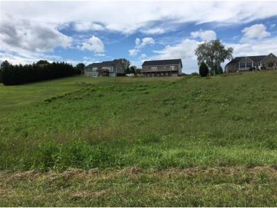 Piney Flats Residential Lots & Land For Sale: Lot 3 Bill Rd