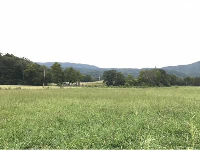 Greene County Residential Lots & Land For Sale: tbd Horton Highway