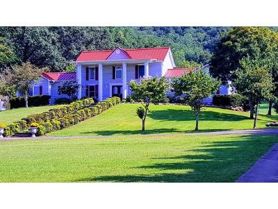 Jonesborough Single Family Home For Sale: 949 Hwy 107