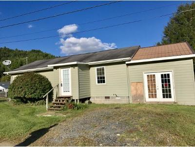 Roan Mountain Single Family Home For Sale: 209 Sawdust Trail