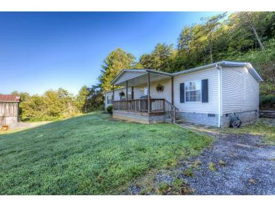 Bluff City Single Family Home For Sale: 1050 Mount Holston Rd
