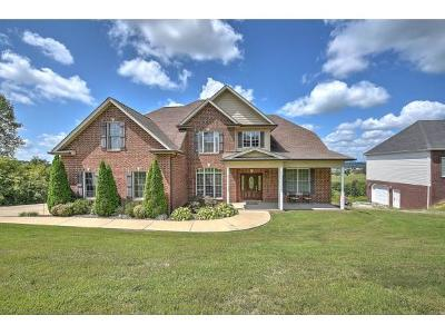 Gray Single Family Home For Sale: 136 Free Hill Ext.