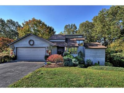 Bluff City Single Family Home For Sale: 325 Essex Dr
