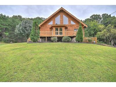 Elizabethton Single Family Home For Sale: 259 Chambers Drive