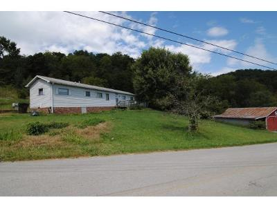 Blountville Single Family Home For Sale: 324 Ethel Beard Rd