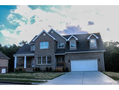 Johnson City Single Family Home For Sale: 411 Glen Oaks