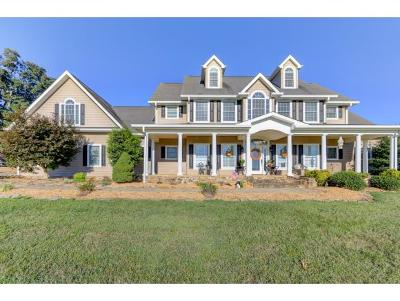 Greeneville Single Family Home For Sale: 345 Anderson Loop
