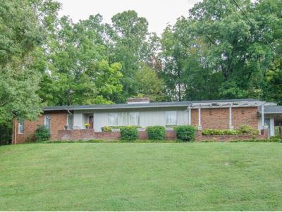 Elizabethton Single Family Home For Sale: 614 Woodland Dr