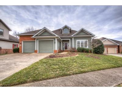 Johnson City Single Family Home For Sale: 1831 Waters Edge Dr