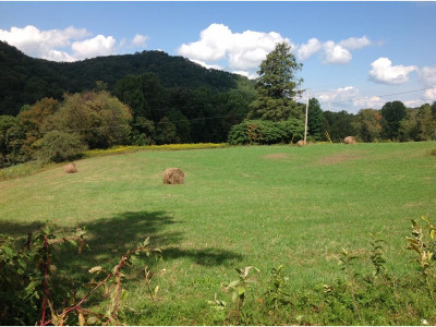 Residential Lots & Land For Sale: lot 1 Dyer