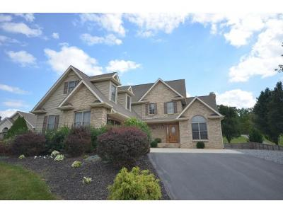 Johnson City Single Family Home For Sale: 764 Carroll Creek Rd.