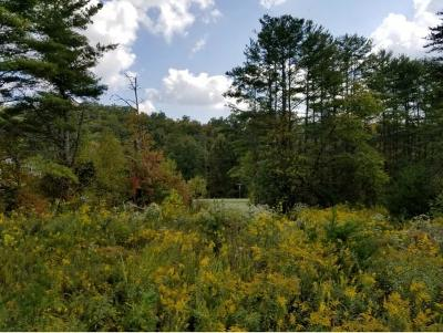 Unicoi Residential Lots & Land For Sale: TR 1 Sciota Road