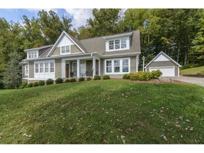 Abingdon Single Family Home For Sale: 26581 Preston Place Dr.