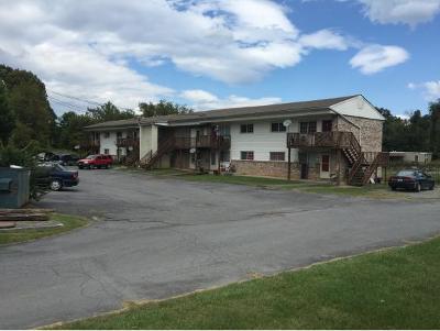 Johnson City Multi Family Home For Sale: 707 Carter Sells Rd
