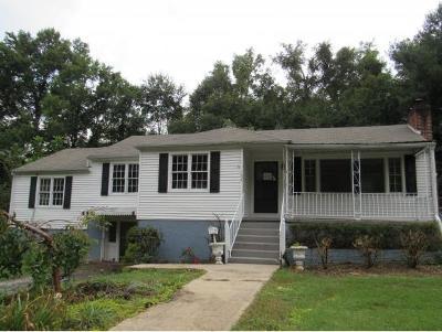 Bristol Single Family Home For Sale: 132 Sycamore Drive