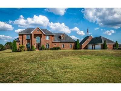 Blountville Single Family Home For Sale: 295 Brown Circle