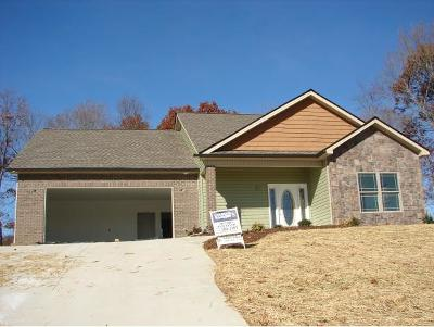 Piney Flats Single Family Home For Sale: 443 Grovemont Place