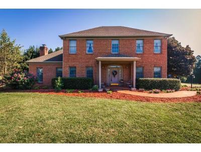 Rogersville Single Family Home For Sale: 200 Brooks Landing Cir