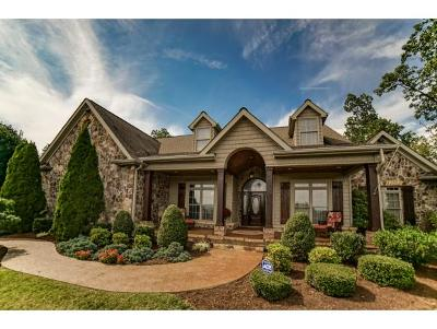 Gray Single Family Home For Sale: 1184 Cliffview Circle