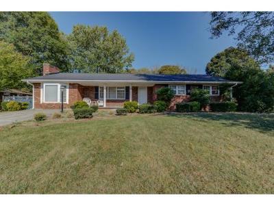 Rogersville Single Family Home For Sale: 143 Lena Drive