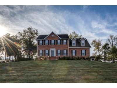 Jonesborough Single Family Home For Sale: 1163 Hidden Valley Dr