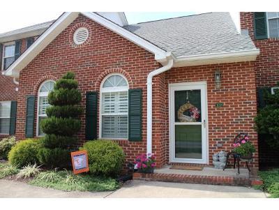 Blountville Condo/Townhouse For Sale: 103 Eagle View Private Drive #103