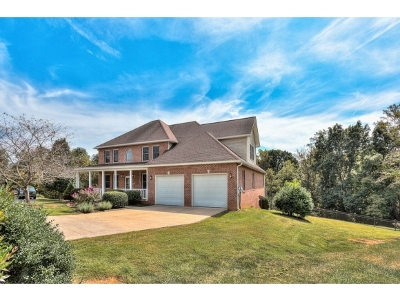 Piney Flats Single Family Home For Sale: 308 Pocahontas Trail