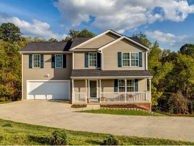 Bristol VA Single Family Home For Sale: $184,900