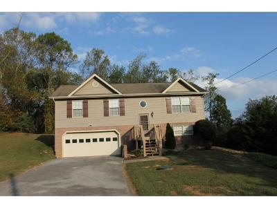 Piney Flats Single Family Home For Sale: 136 Magnolia Grove Court