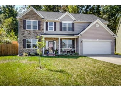 Johnson City Single Family Home For Sale: 1209 Hammett Road