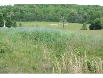Washington-Tn County Residential Lots & Land For Sale: 226 Jay Armentrout Road