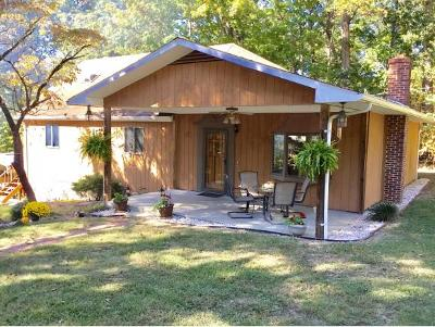 Piney Flats Single Family Home For Sale: 597 Price Rd