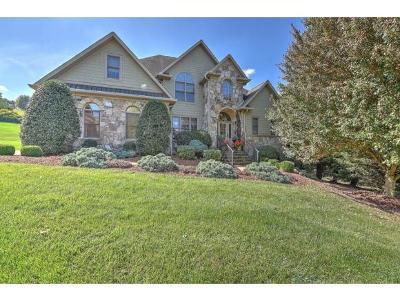 Johnson City Single Family Home For Sale: 200 Highland Gate Drive