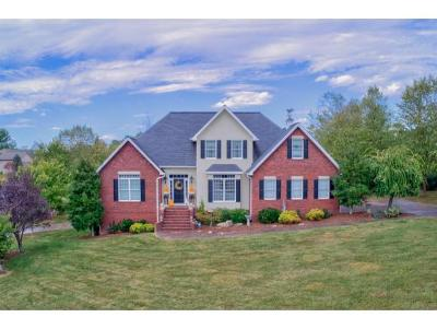 Elizabethton Single Family Home For Sale: 111 Stonebrook Loop
