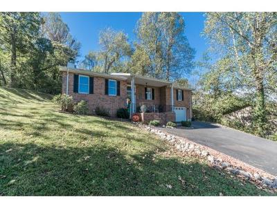 Piney Flats Single Family Home For Sale: 329 Edgefield Drive