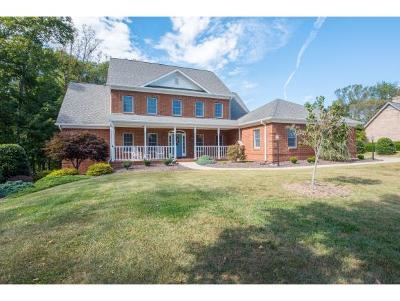 Kingsport Single Family Home For Sale: 226 Saddle Ridge Dr